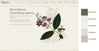 Beautiful and Inspiring Color Combinations in Web Design - Bloom