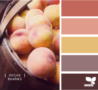 Color Inspiration #4 - Peach Color